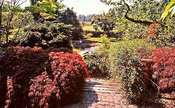 Bepflanzungen schertler gartengestaltung bildhauerei for Gartengestaltung dreieck